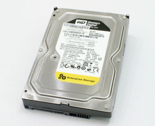 "3.5"" WD2502ABYS 250GB 7200RPM 16MB disque dur"